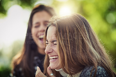 Buy stock photo Cropped shot of two attractive young women laughing while sitting in the park