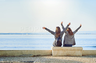 Buy stock photo Rearview shot of two attractive young women spending a day by the ocean