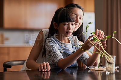 Buy stock photo Shot of a cheerful mother and daughter spending time taking care of plants together inside at home during the day