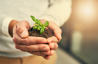 Buy stock photo Cropped shot of a businessman holding a plant growing out of soil