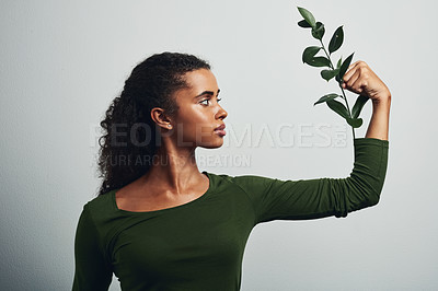 Buy stock photo Studio shot of an attractive young woman posing with a plant against a grey background