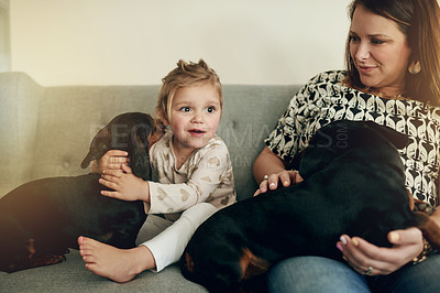 Buy stock photo Shot of a mother and her little daughter bonding with their dogs at home
