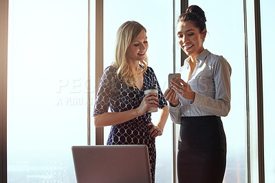 Buy stock photo Cropped shot of an attractive young businesswoman showing a female colleague something on her cellphone
