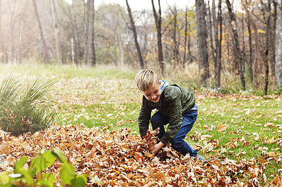 Buy stock photo Shot of an adorable little boy playing in the autumn leaves outdoors