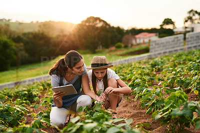 Buy stock photo Shot of an attractive young woman using a tablet while working on the family farm with her daughter