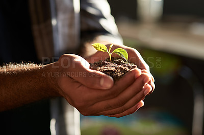 Buy stock photo Closeup shot of an unrecognizable businessman holding a plant growing out of soil