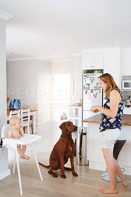 Buy stock photo Shot of a young woman feeding her adorable baby girl and dog at home