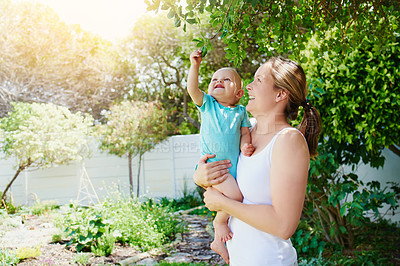 Buy stock photo Shot of an adorable baby girl exploring the backyard with her mother at home