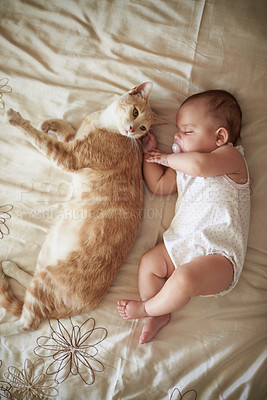 Buy stock photo Shot of an adorable baby girl sleeping peacefully next to a cat on a bed at home