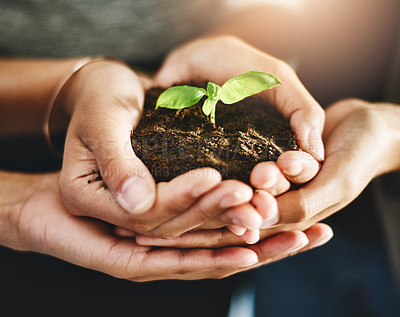 Buy stock photo Closeup shot of an unrecognizable group of businesspeople holding a plant growing out of soil