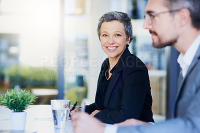 Buy stock photo Portrait of a mature businesswoman working alongside a colleague in an office
