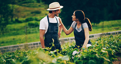 Buy stock photo Shot of a happy young couple working in a garden together