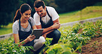 Keeping track of their crops with smart apps
