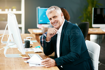 Buy stock photo Cropped portrait of a handsome mature businessman looking over paperwork while working in his office