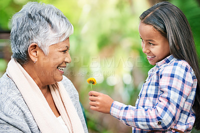 Buy stock photo Cropped shot of an adorable little girl giving her granny a flower while enjoying the day outdoors
