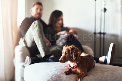 Buy stock photo Shot of a cheerful young family seated on a sofa together at home during the day
