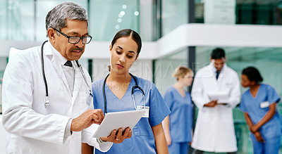 Buy stock photo Shot of doctors in a hospital