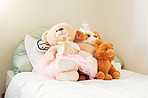 Teddy bears provide comfort, warmth, security and companionship