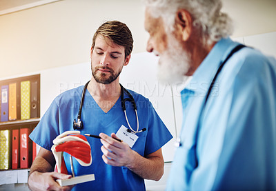 Buy stock photo Shot of a young doctor using a model to explain a diagnosis to his senior patient