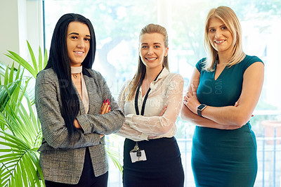 Buy stock photo Cropped portrait of three businesswomen standing side by side in their office