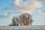Farmland in winter - Denmark