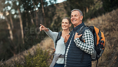 Buy stock photo Shot of a mature couple looking at the view while hiking through the mountains