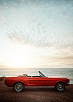 Summer invites you to take a road trip