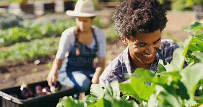 Buy stock photo Cropped shot of a young couple working the fields together on their farm