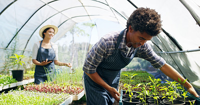 Buy stock photo Cropped shot of a young couple working in a greenhouse on their farm