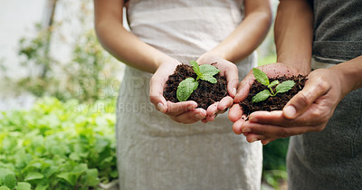 Buy stock photo Cropped shot of an unrecognizable couple holding budding plants in soil while working on their farm