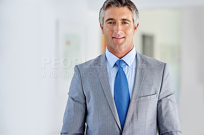 Buy stock photo Portrait of a confident mature businessman wearing a suit and standing indoors