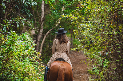 Buy stock photo Rearview shot of a young woman riding a horse in a forest
