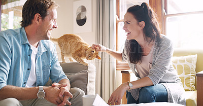 Buy stock photo Cropped shot of an affectionate young woman laughing with her husband while petting her cat in their living room