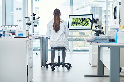 Buy stock photo Rearview shot of a focused young female scientist conducting experiments inside of a laboratory during the day