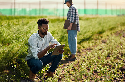 Buy stock photo Full length shot of a handsome young male farmer using a tablet while working on his farm with a female colleague in the background
