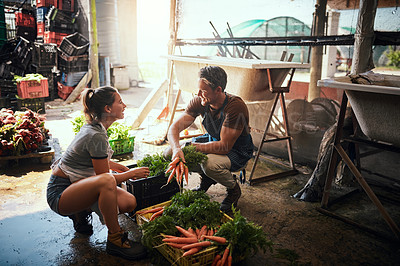 Buy stock photo Full length shot of a happy young couple cleaning and preparing bunches of freshly picked produce at their farm