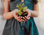 Learn to nurture the growth of nature