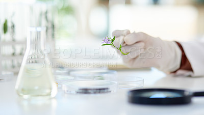 Buy stock photo Closeup shot of an unrecognisable scientist working with plant samples in a lab