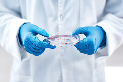 Buy stock photo Closeup shot of an unrecognisable scientist holding a petri dish in a lab