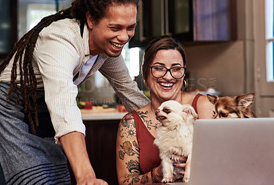 Buy stock photo Cropped shot of a cheerful young couple having a video call on a laptop while holding their dog at home