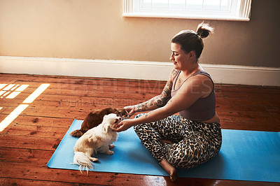 Buy stock photo Shot of a young woman petting her dogs while sitting on a yoga mat at home