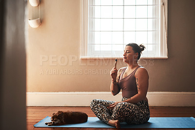 Buy stock photo Shot of a young woman burning a palo santo stick while sitting on a yoga mat alongside her dog at home