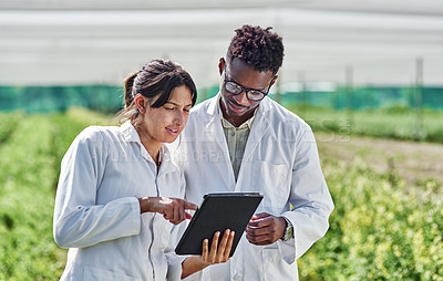 Buy stock photo Shot of two young scientists using a digital tablet wile studying crops and plants outdoors on a farm