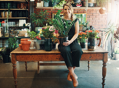 Buy stock photo Full length portrait of an attractive young business owner sitting alone in her floristry and holding a pot plant