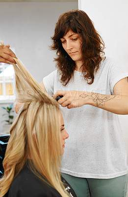 Buy stock photo Cropped shot of an attractive young hairdresser standing and styling her client's hair in the salon