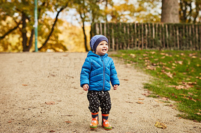Buy stock photo Full length shot of an adorable little boy looking amused while walking though a park alone in autumn