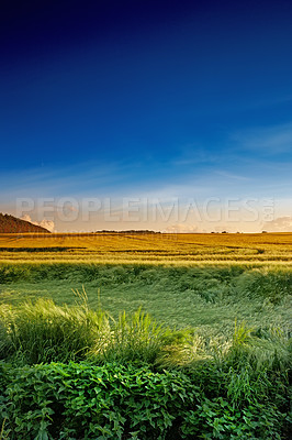 Buy stock photo A photo of a beautiful sunset in the countryside