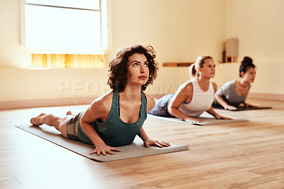 Buy stock photo Shot of a group of young women practicing the cobra pose during a yoga session