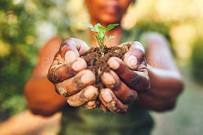 Buy stock photo Cropped shot of an unrecognizable woman holding a plant growing of soil
