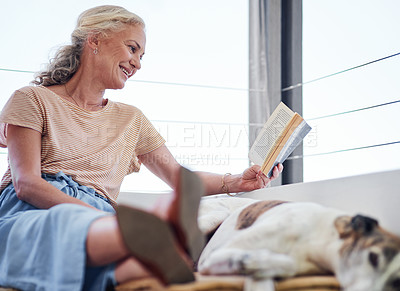 Buy stock photo Cropped shot of an attractive senior woman reading a book while relaxing on the balcony with her dog